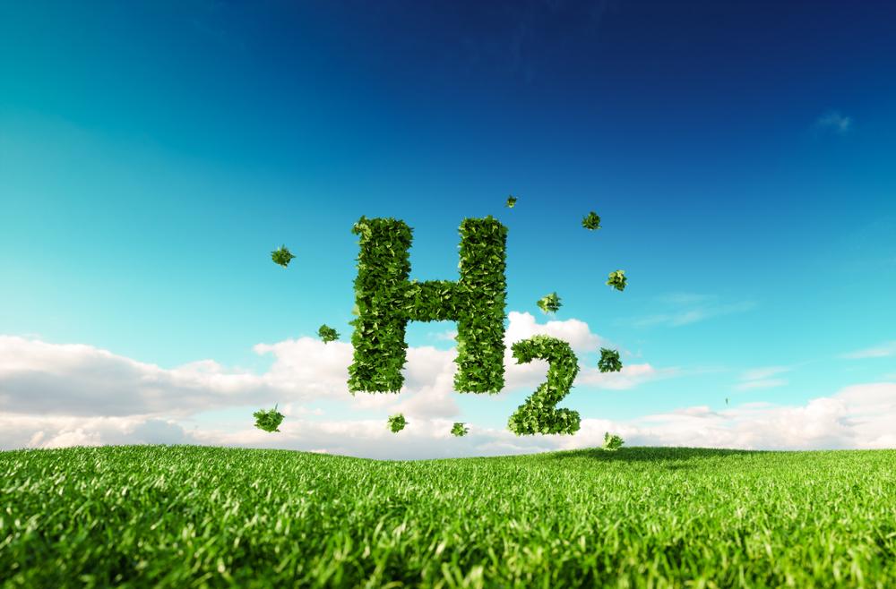 Green hydrogen project