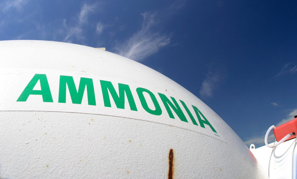 World-first discovery could fuel the new green ammonia economy