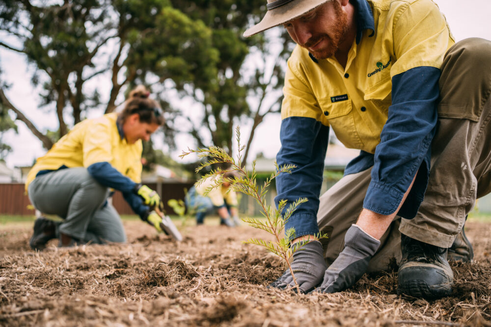 Greening Australia and WWF-Australia announce new partnership