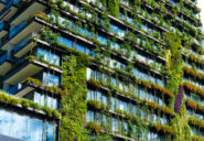 IEA report: Cities are key to a net-zero emission future
