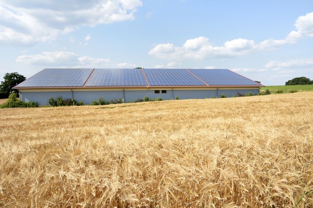 How farms can reduce energy costs through smart energy management